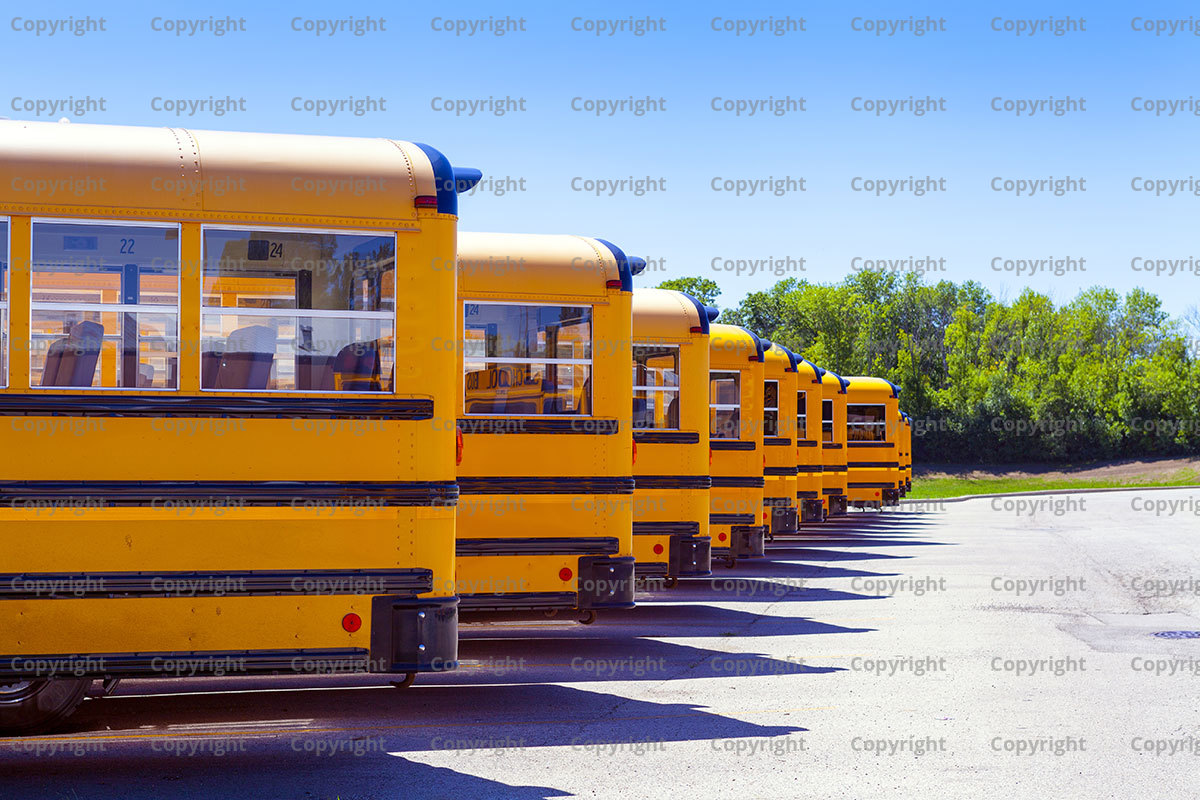 Why Are School Buses Yellow?